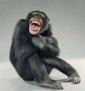 Persuasive grin?