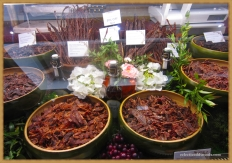 dried meats, something to chew on
