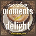 random moments of delight