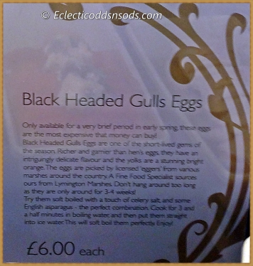 Black Headed Gulls Eggs £6 each