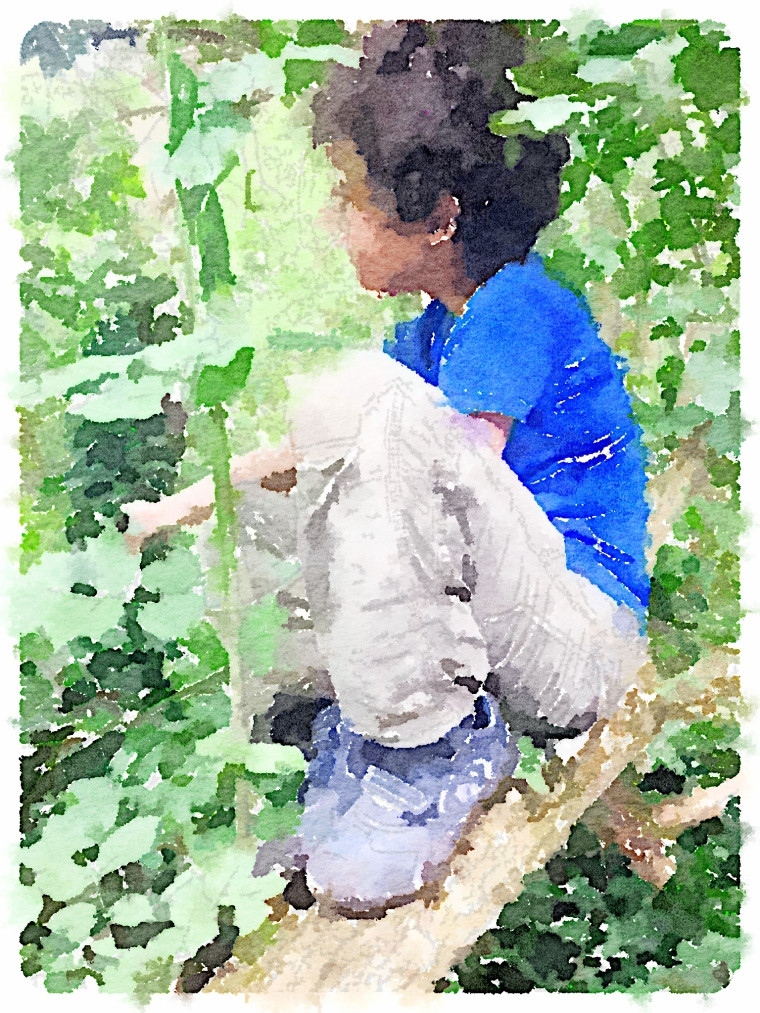 Boy in tree watercolour style