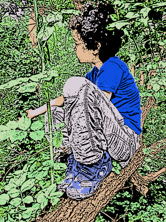 cartoon of boy in tree