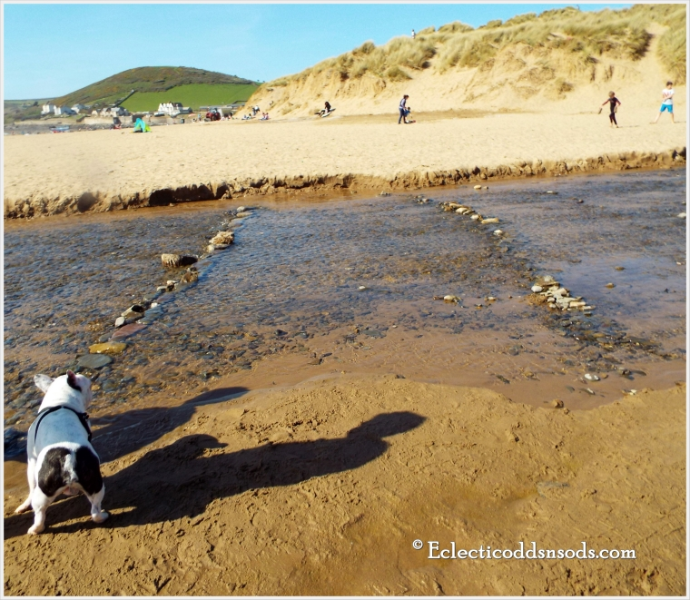 He is considering walking between the pebbles
