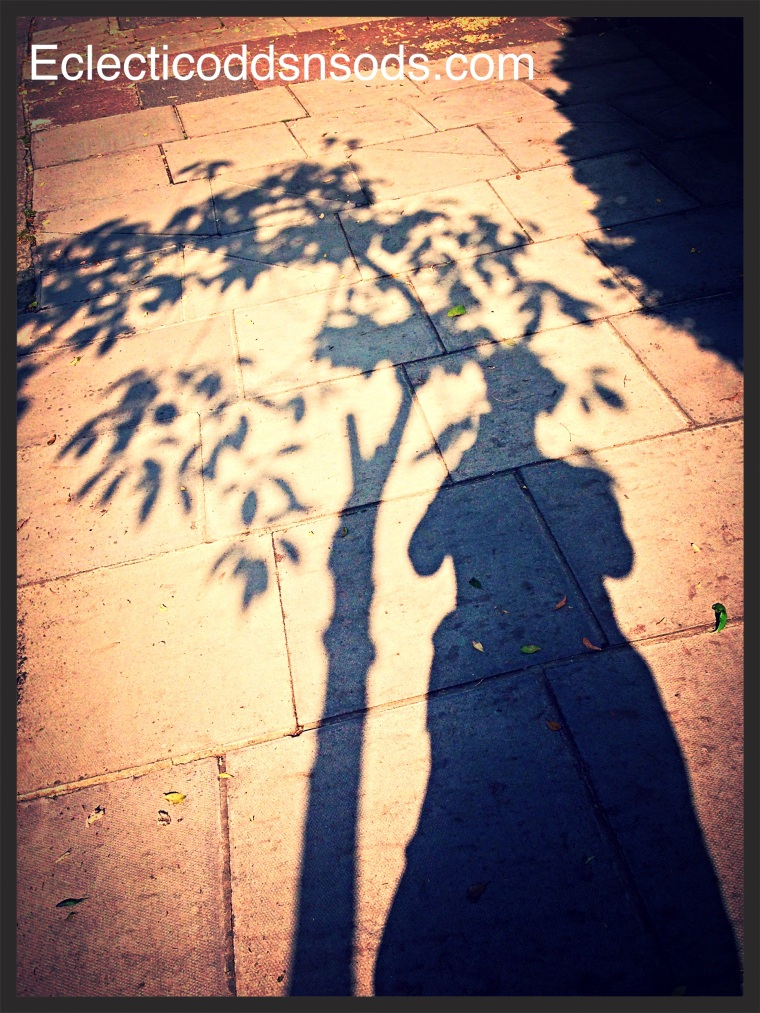 Shadow Play - Victorian Lady resting by a small fruit tree