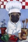 chef pug