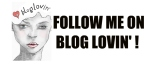 FollowUsWithBlogLovin