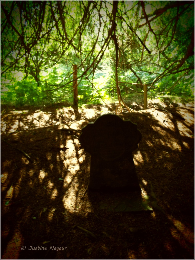 Shadow and sun across a grave