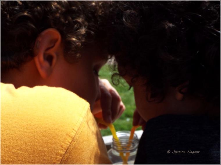 the bond of siblings
