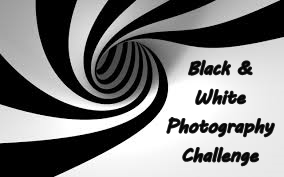 Black & White photography challenge