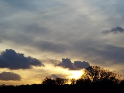 A golden horizon