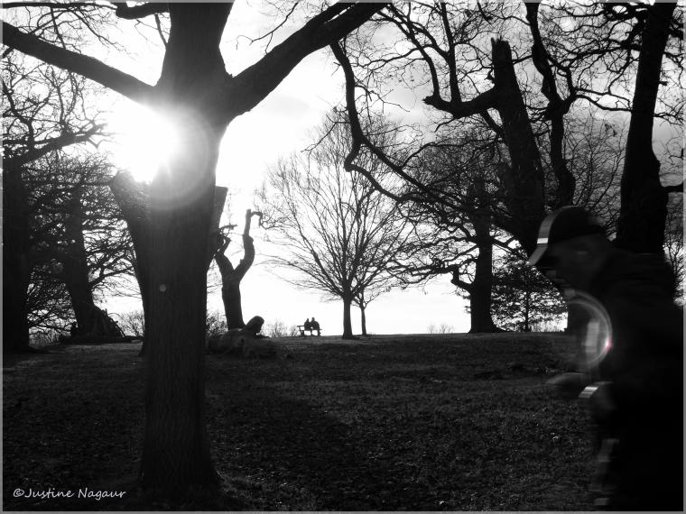 Weekly Photo Challenge: Shadowed
