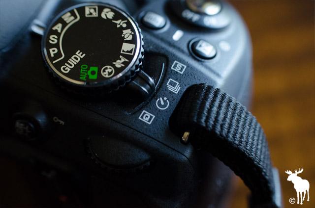 Nikon self timer