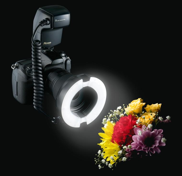 macro and flash photography